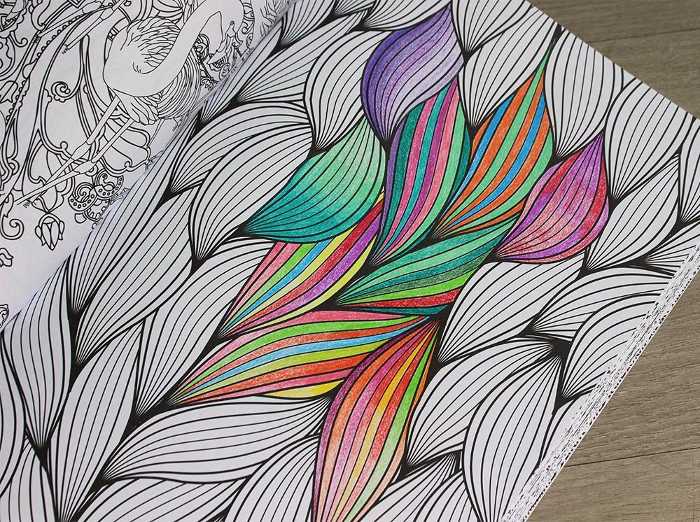 Kleurplaten Volwassenen Waarom.Ann Sofie Sabbe On Twitter Wie Doet Het En Waarom