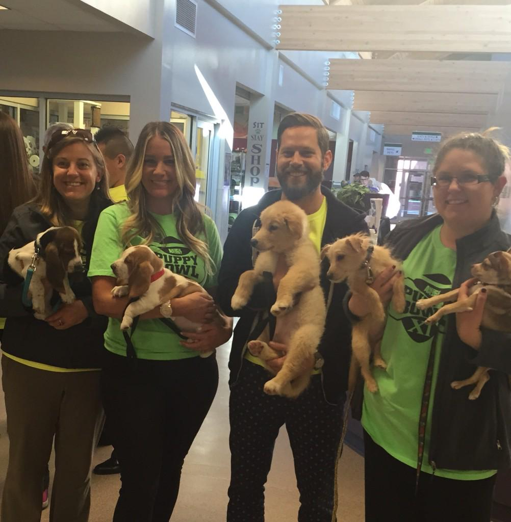The #UberPuppyBowl starting lineup is ready to go! We're bringing puppies on demand to Denver with @Uber_CO! http://t.co/ATHmPB4GEv