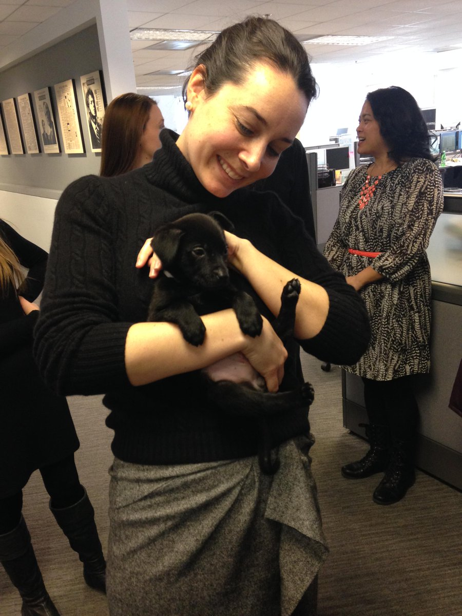 Uber brought puppies to @wsj DC buro. Now they're being interviewed http://t.co/xXlqS0mI0t