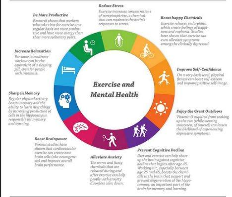 """The Rising Sun on Twitter: """"Mental Health Benefits of ..."""