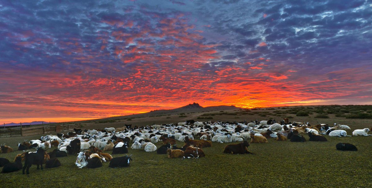 """@Traveltomongol: #BloodySunriseOfTheBreathless #Mongolia http://t.co/EGCRPw23g8"""