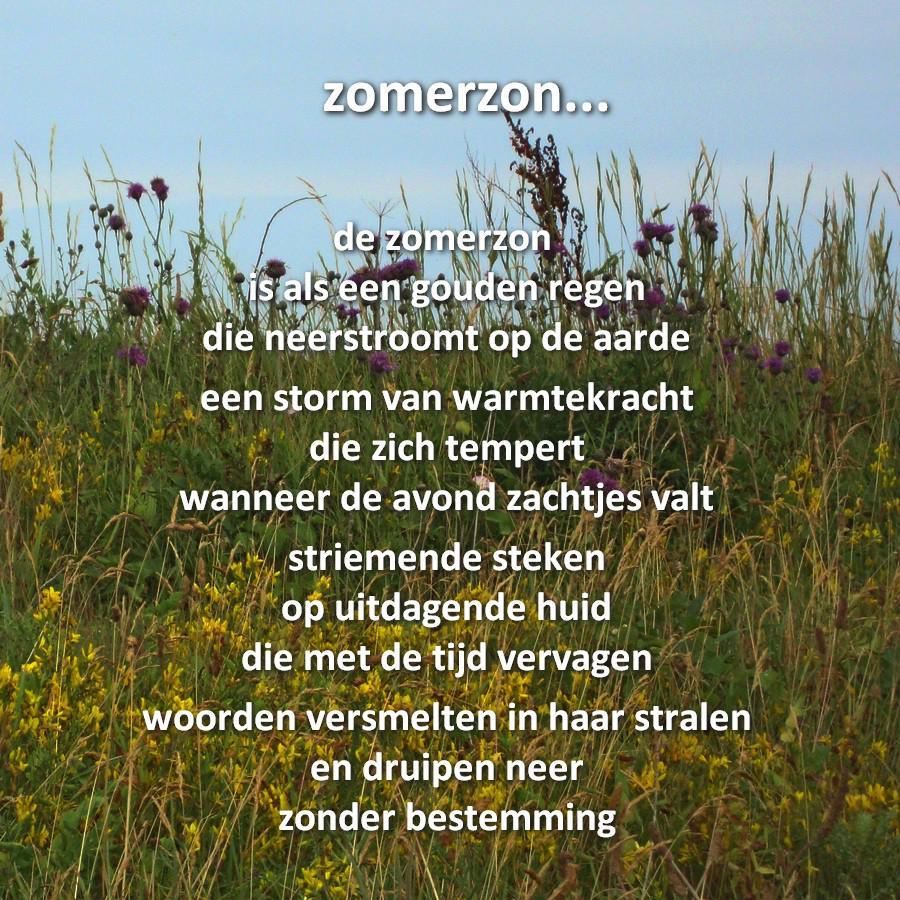 Gedicht over storm
