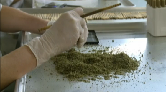 Seattle is rolling 12,000 joints for the #SuperBowl http://t.co/8dvi0B5muO http://t.co/jZx5PQVRtq