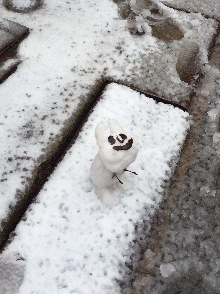 雪の池袋。乙女ロードの手前。凍えそうな猫が立っていた。 pic.twitter.com/jLMoABCd9x