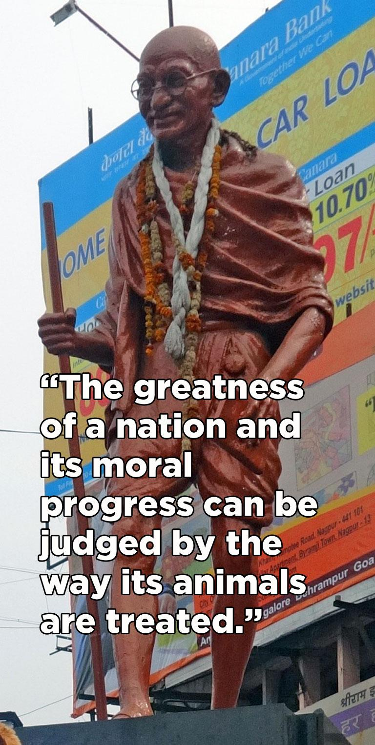 RT @PetaIndia: TRIBUTE to Mahatma Gandhi on his 65th death anniversary. Thank you for bringing so much compassion to the world! http://t.co…