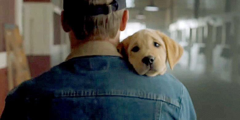 #SuperBowlXLIX – Here It Is The Definitive List Of The Best Super Bowl Commercials OF ALL TIME http://t.co/qYeqD55osG http://t.co/CmlvDGwd8o