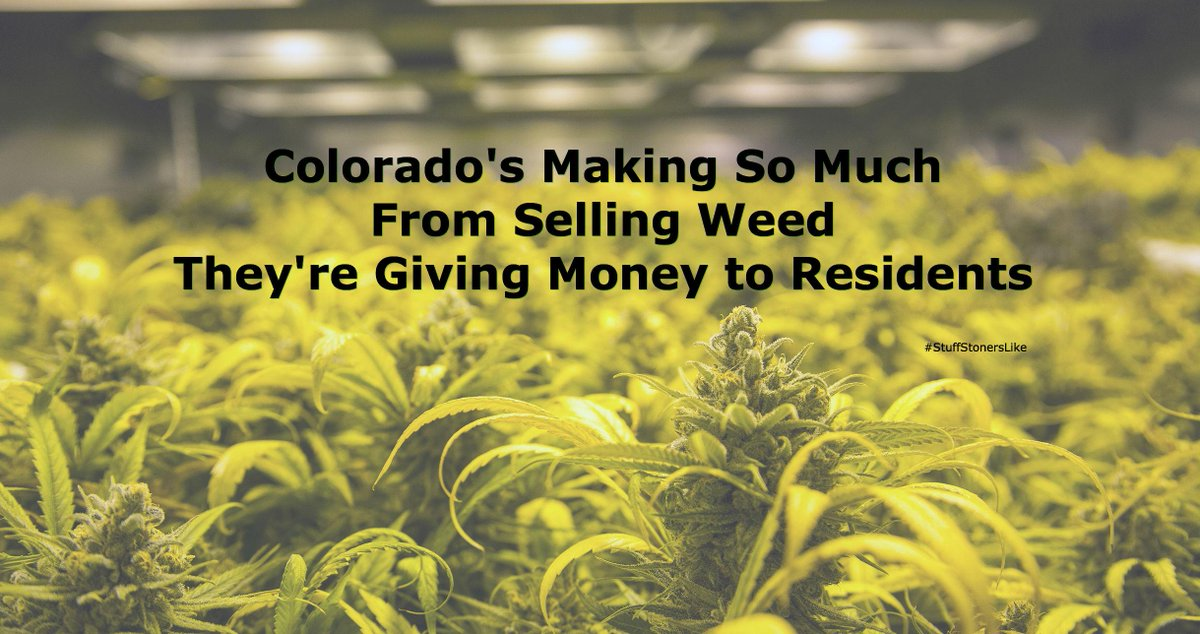 Colorado's Making So Much From Selling Weed They're Giving Money to Residents http://t.co/64PGKYDiEJ http://t.co/yqDnN09RZA