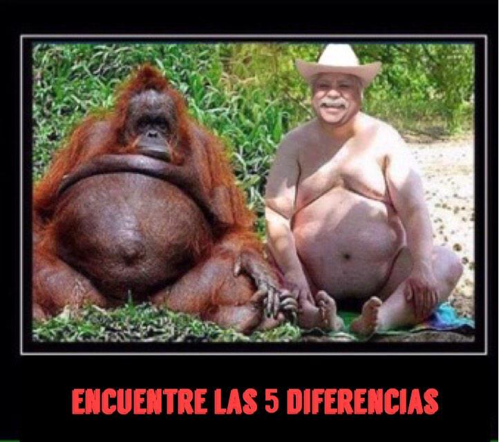Don Cheto Al Aire On Twitter A Ver Que Tal Rt Httptco