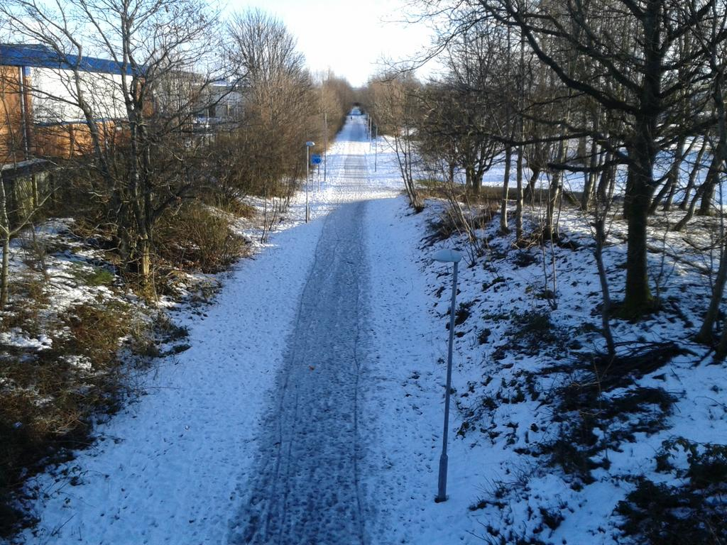 Ice and snow on the Maxwelltown path