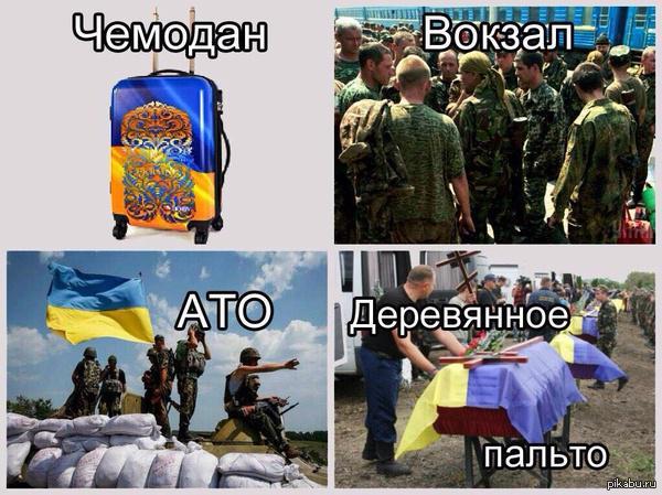 Под Мариуполем российские боевики стреляли из тяжелого оружия, есть раненые - Цензор.НЕТ 9867