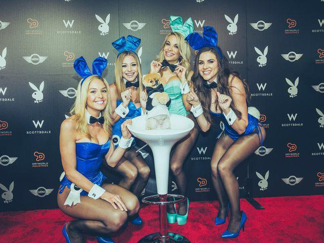 Obsessed!!! @jiffpom @MINIUSA @Playboy #MINIPlayboyParty http://t.co/csRvhuXvya