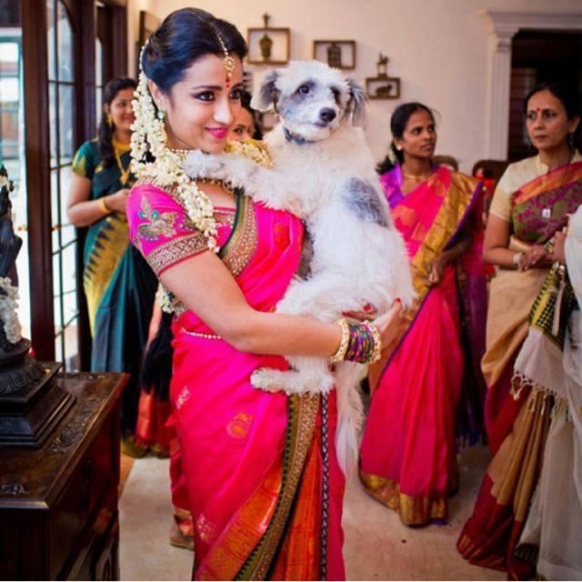 Image result for trisha engagement