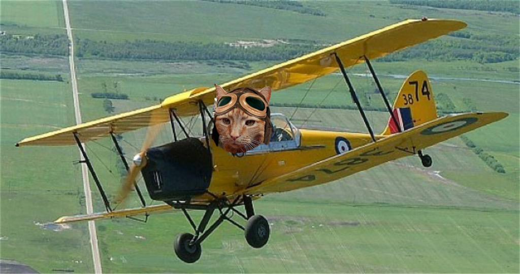 zulu oscar 12 reportin in Tiger Moff tuday (Lanc bein mended) cleared by TWR to land at Manston OVR #TheAviators http://t.co/gJ46nbXtKh