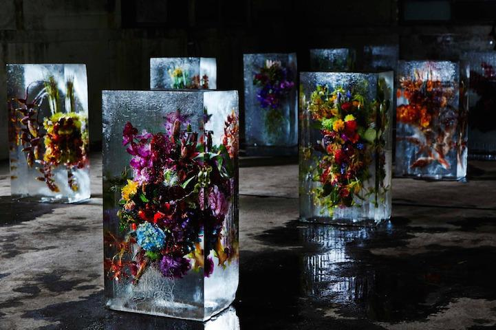 Colourful flowers frozen in ice - take a look: http://t.co/4JV2xW6USl #art http://t.co/grb0714ZNU