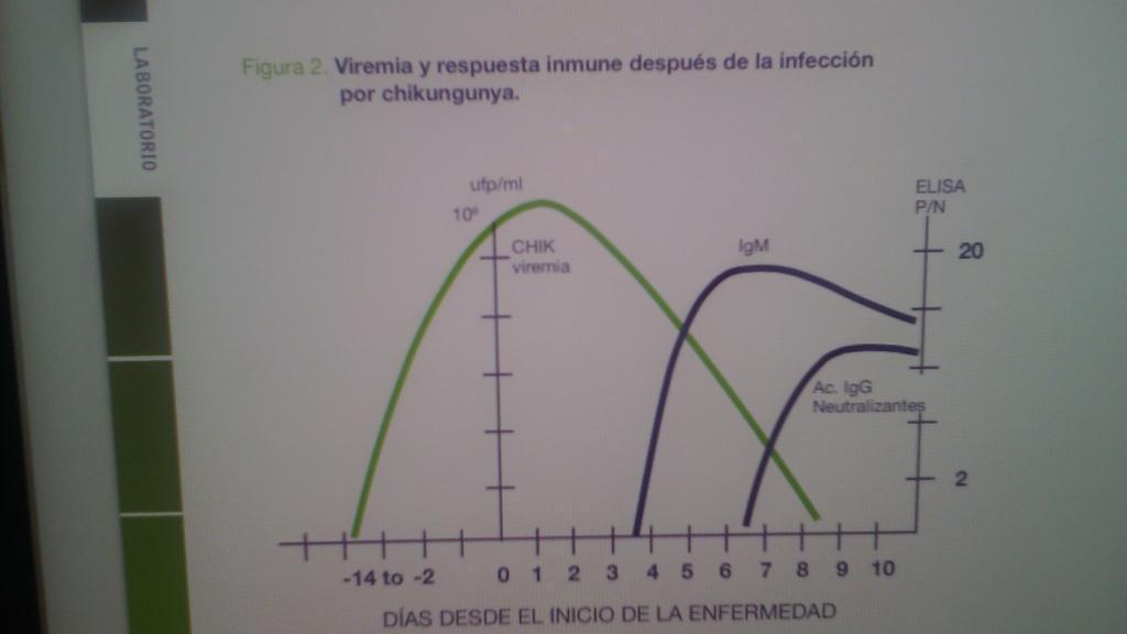 @rotreuma1 @carvicab #chikungunya viremia y resp inmune despues de la infeccion por CHIKV http://t.co/I82AnN96KC