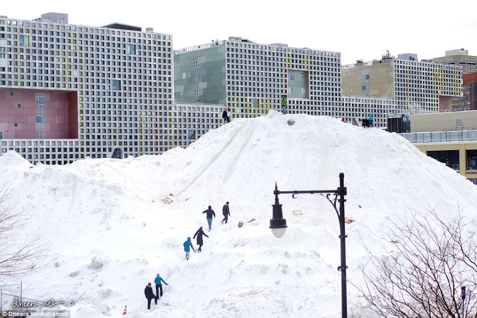 MIT Alps