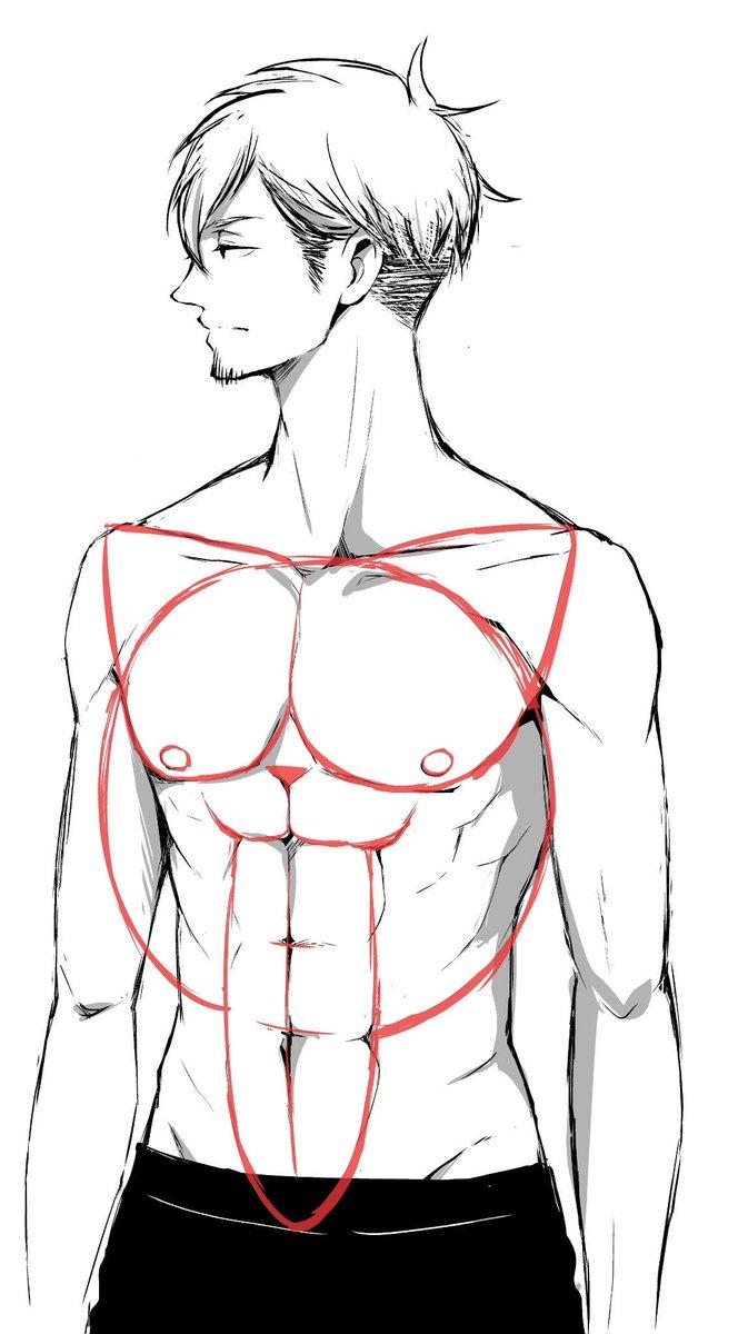 裸をあまり描かないので筋肉の描き方をよく忘れるのですが なんとなくアタリを『舌出してる猫』にしたら忘れなくなりました。