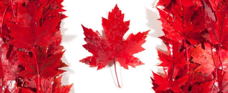 Canada — best country, best flag, the true north strong and free. Happy 50th to the red maple leaf! http://t.co/25RK7IAjMF