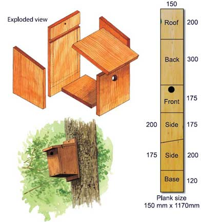 Take part in National Nest Box Week! Here's how to build your own nest box: http://t.co/5LEbGFeYFA #NNBW - Evie http://t.co/rV4C1rQ3DS