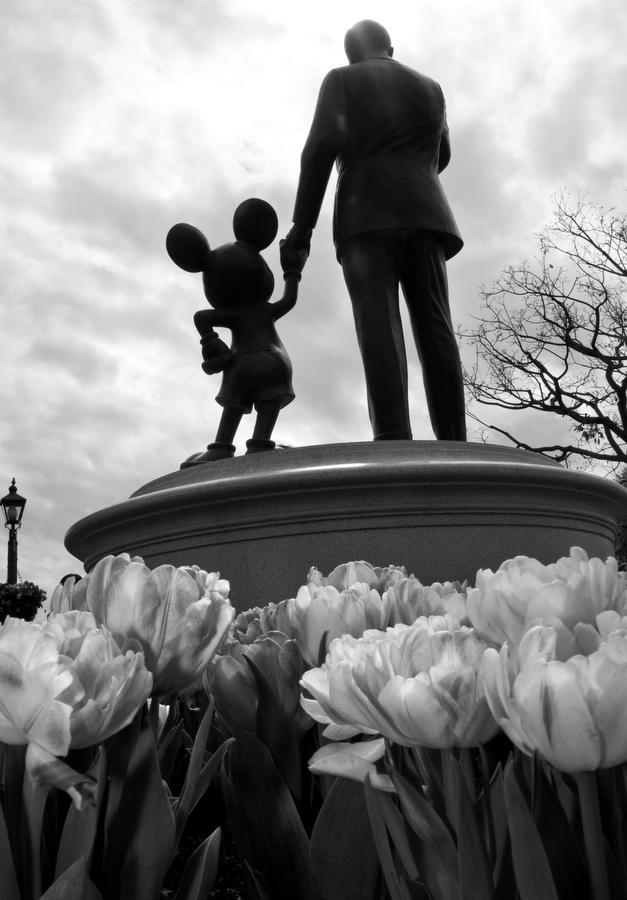 """Disneyland is your land."" - Walt Disney #Disneyland365 http://t.co/31rVHViNTI"
