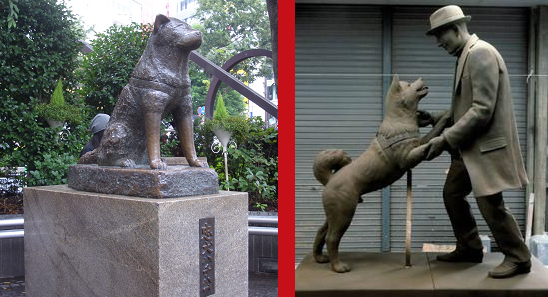 Hachiko, Japan's most loyal dog, reunited with owner in heartwarming new statue inTokyo http://t.co/Qh3Ag9wrDM http://t.co/ZL05uCFY3a