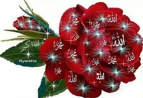 Islam Quran Hadith On Twitter Subha Allah Beautiful Flower With