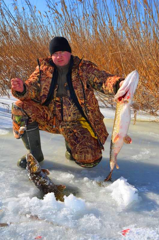 мурманфишинг отчеты о рыбалке