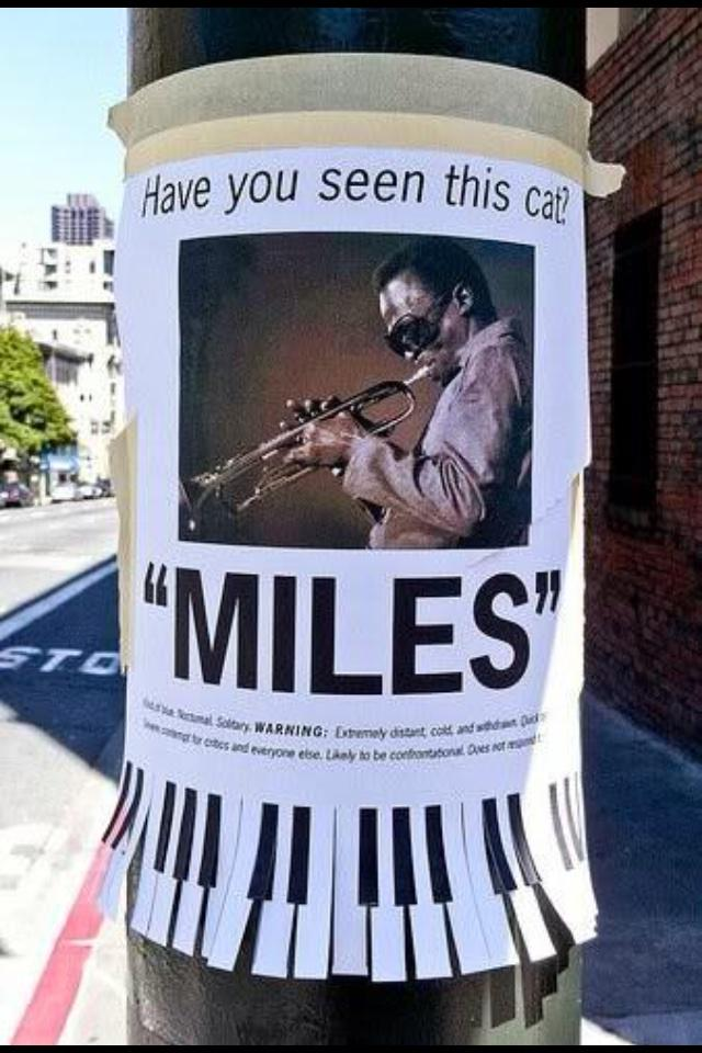 Have you seen this cat... Please RT http://t.co/A6BIs551gp