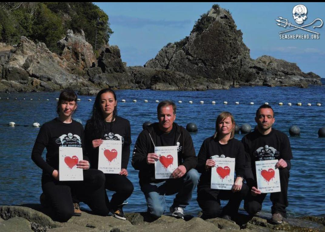 "#FF""@CoveGuardians: SHOW YOUR LOVE! World Love For Dolphins Day! February 13th https://t.co/T4joAYOMx6 #tweet4taiji http://t.co/rkJm969ZVS"