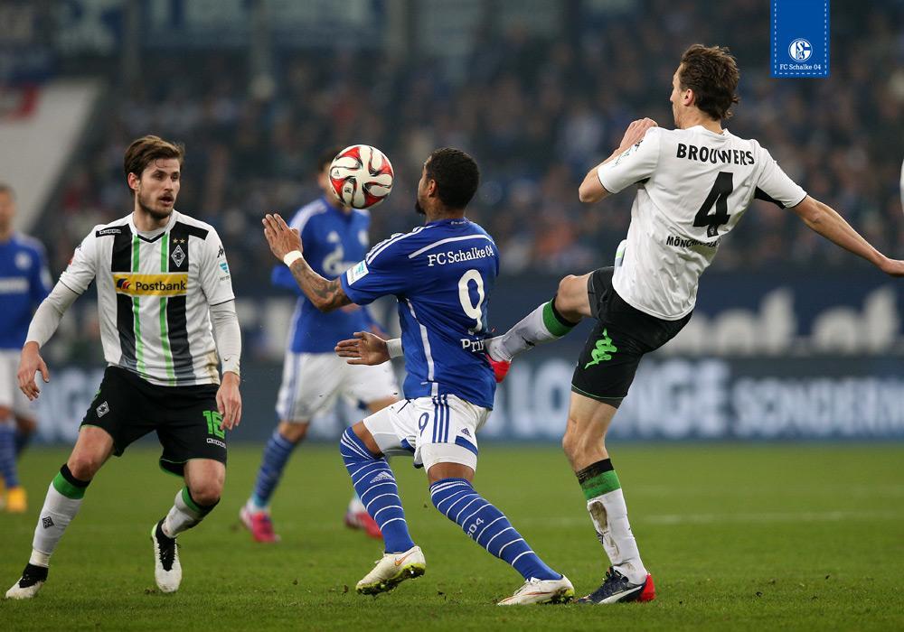 Schalke 04 Twitter