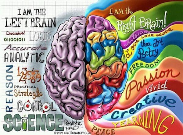 Despite the pseudo-science. I have one brain with two linked hemispheres, not two brains. Protect the brain! http://t.co/YGbBSD2xcZ