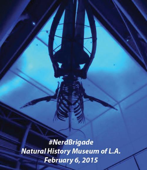 #NerdBrigade @NHMLA #FirstFriday under a huge whale http://t.co/DwoMvGmFir #SciComm cc @jgold85 @CaraSantaMaria http://t.co/unLxBQFrKQ
