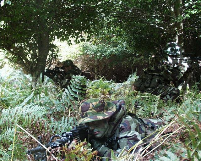 アーミーレンジャーウィングアイルランド軍は小規模な軍隊であるにもかかわらず野戦任務に加え対テロ任務も遂行可能な特殊部隊を1970年代に創設する。本部隊の創設に際しては優秀な将兵をアメリカに派遣しレンジャー訓練を受講させ基幹隊員とした
