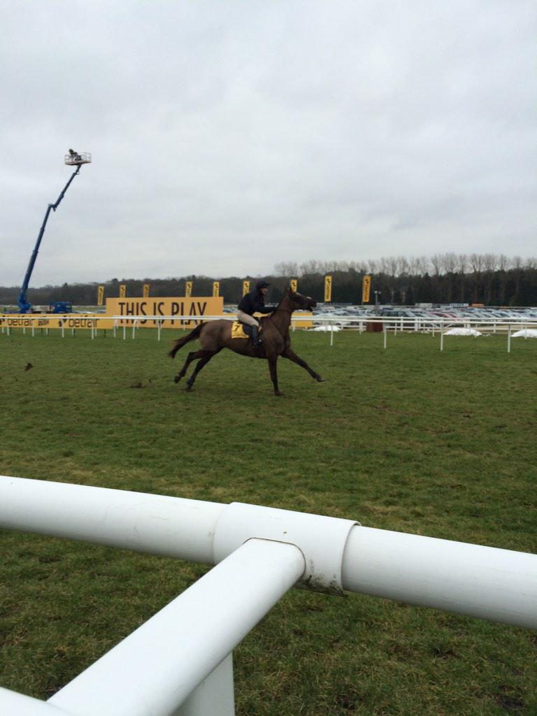 Denman stretching his legs ahead of his race #stillgotit http://t.co/liXoBo31X7