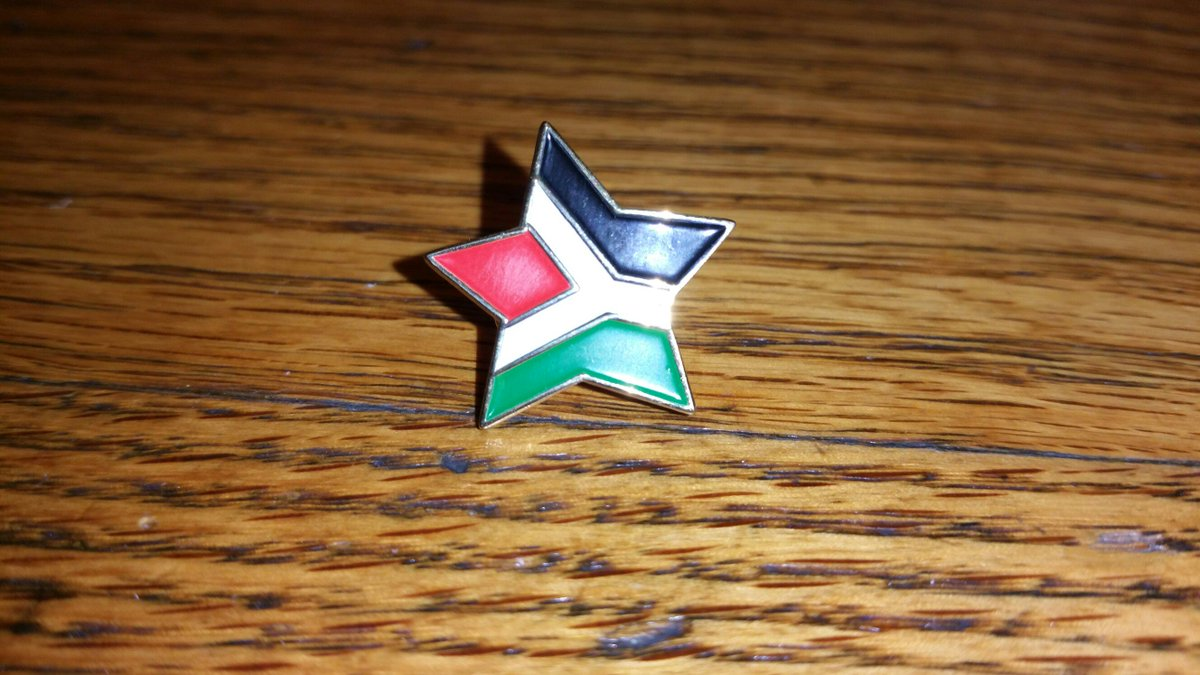 new pin for the collection #Palestine #Celtic http://t.co/MEvrEpTmnF