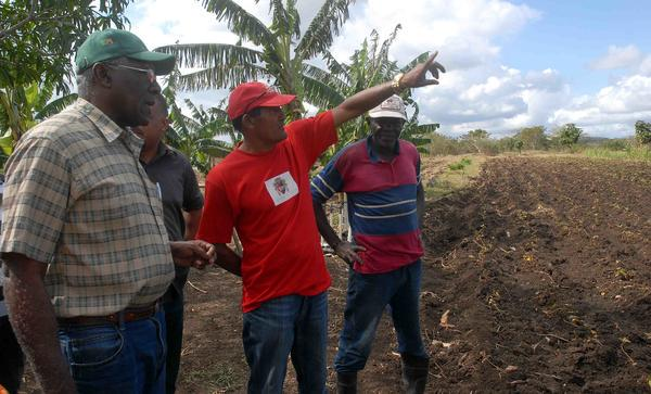 Lograr la seguridad alimentaria es impostergable, puntualiza Valdés Mesa