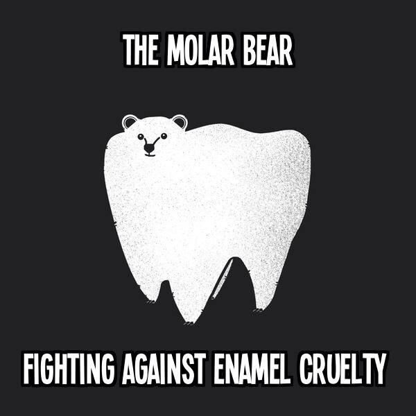 Molar bear. http://t.co/7AiboSFRSP