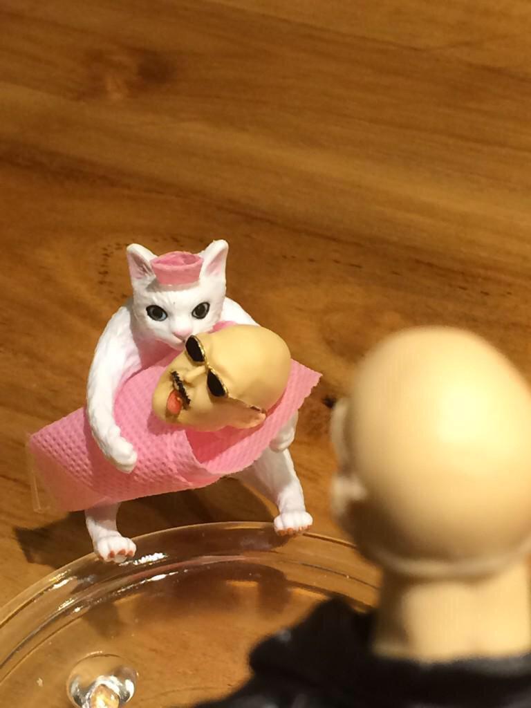 『平田志穂子劇場』 〜俺は猫耳の娘を期待していたんすわ〜 @ShihokoHirata @mafia_kajita  ごめんなさい、、、 ツボったので勝手にまとめました。 続編希望 #フィギュア梶田 http://t.co/yvkYBBotTU