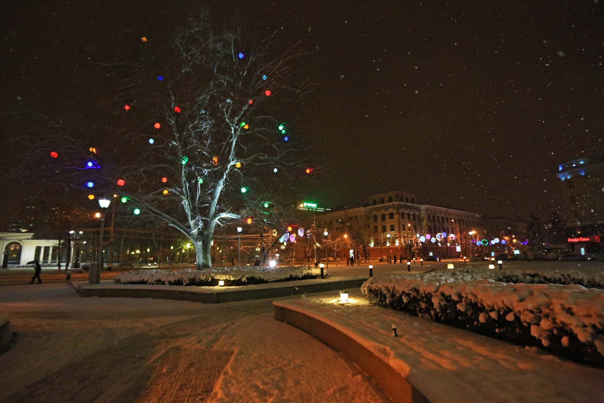 мара зима в краснодаре фото фото интернете, взяли