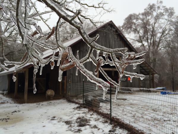 USA: neve e gelo con 23 vittime