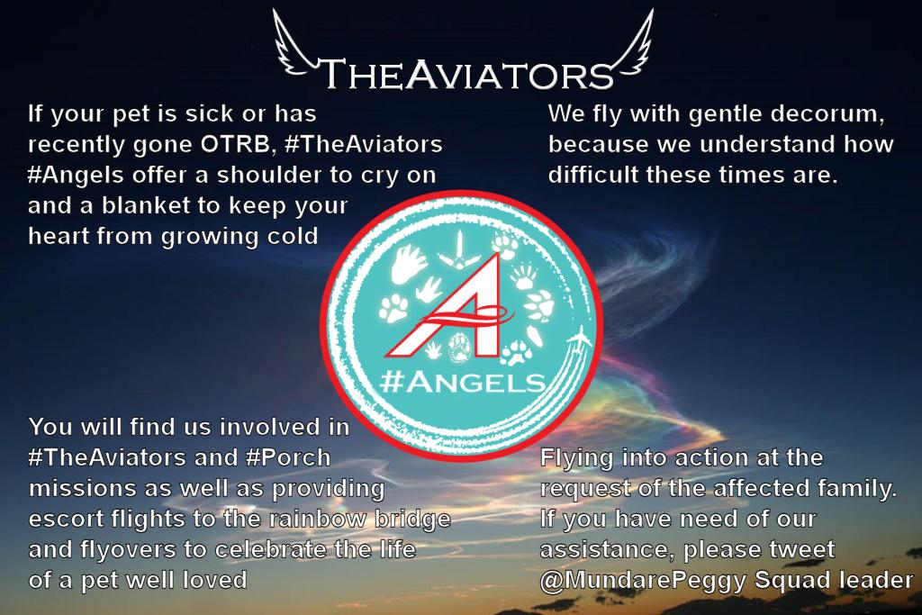 MORE INFORMATION about #TheAviators #Angels Squadron by @MundarePeggy at club blog http://t.co/pe1AWlKB3e http://t.co/HO1G2El7Ur