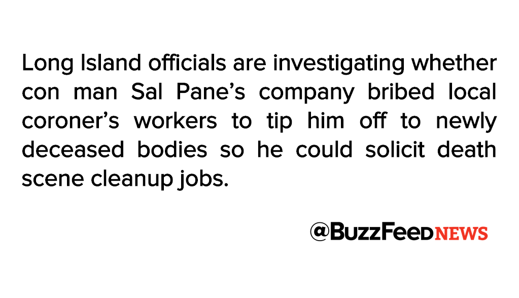 Long island officials investigating whether con man sal pane bribed ...