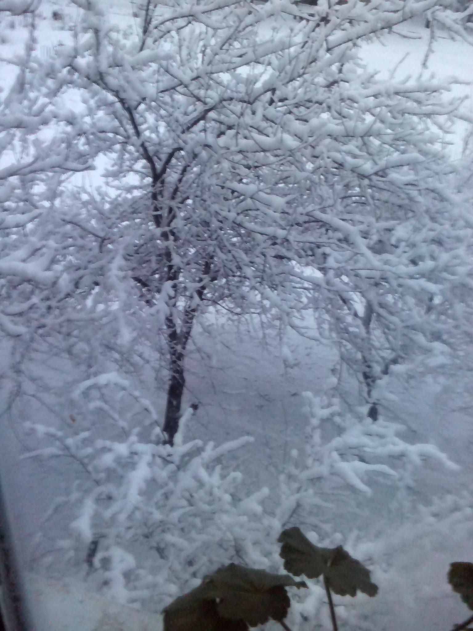 В районе Углегорска развернута тактическая группа боевиков Безлера, вблизи Вергулевки разместилась группа наемников-неславян из РФ, - ИС - Цензор.НЕТ 9474