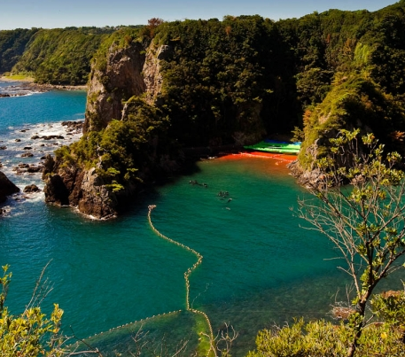 """This is """"The Cove"""" of Taiji, Japan, Where the Blood of Dolphins Blemishes the Scenery #Blackfish #Tweet4Dolphins https://t.co/ufxZiEu9PY"""
