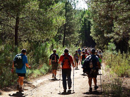 Los turistas aprecian cada vez más los destinos gestionados de forma sostenible http://t.co/wb7TZx9UQZ http://t.co/UeEXNdn2Ul