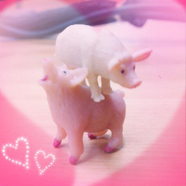 こちらがそのリアルな豚さんです♡ by西 #洲崎西 #ぞい姉 #ぽいんてし pic.twitter.com/Iep2fx69Py