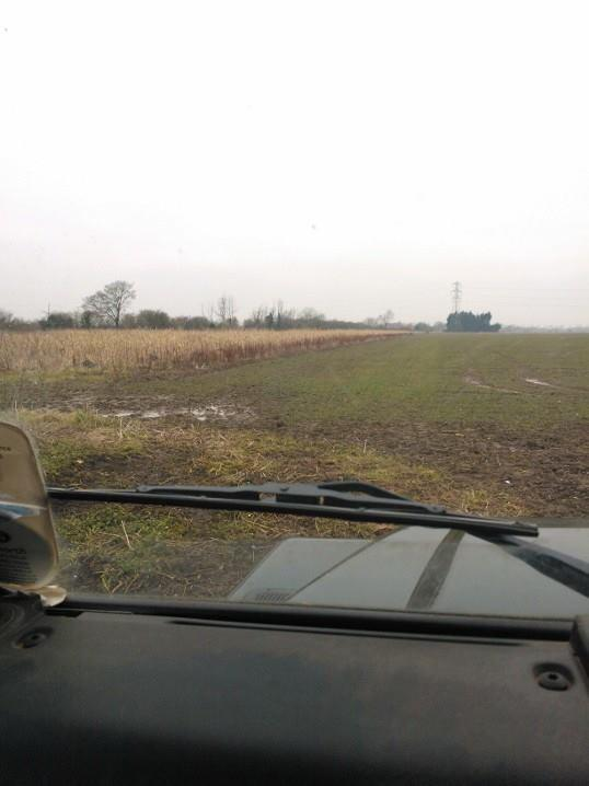 Out on the farm with husband doing the big farmland bird count. It's a bit grey & cold. http://t.co/x8fqcGUzMa