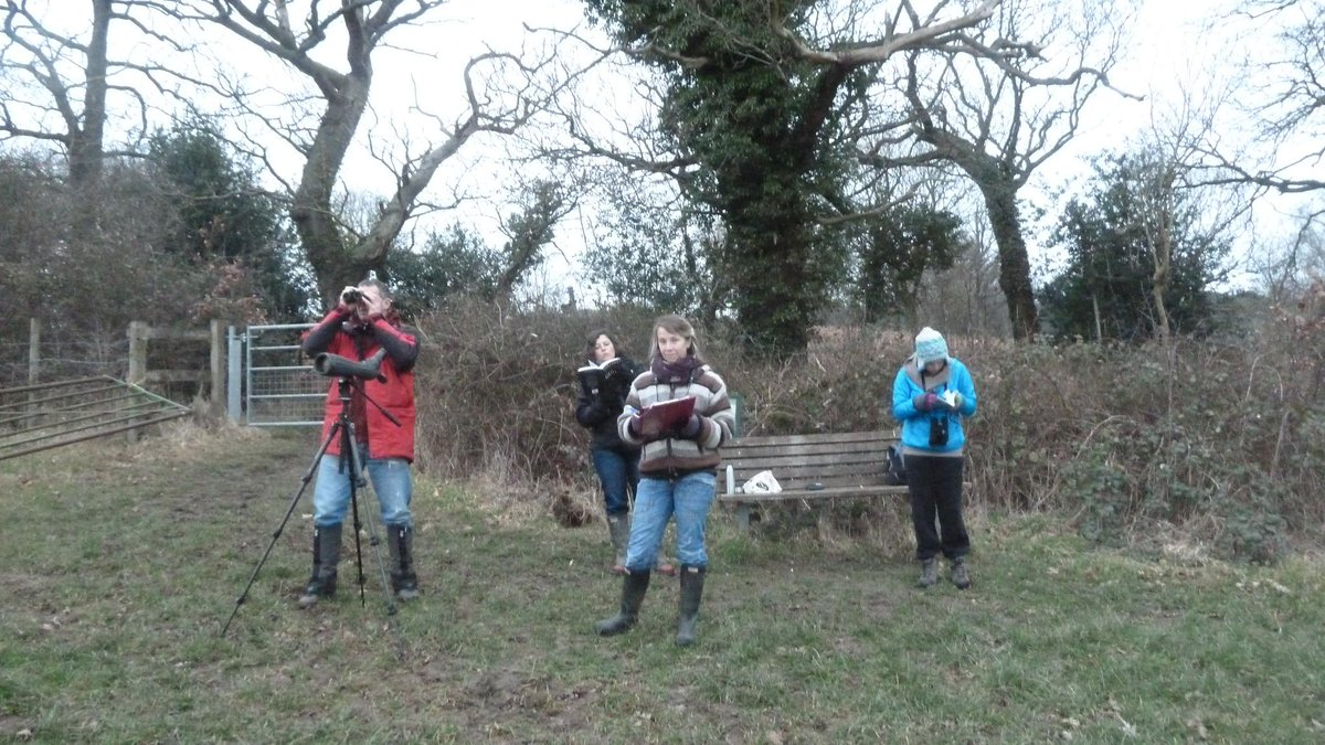 Thanx Jo, Sally, Meg, Ali & Bob the Birder. 21 species birds at Elm Farm this am inc greylag goose & redwings.#bfbc http://t.co/2syocsU5oT