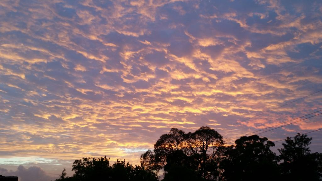 "Dawn via ""@sailpip: Good morning Sydney! Have a great Friday http://t.co/kKKfgcU9MD"" #walkmyworld"