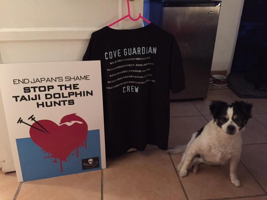 See you in downtown LA.   #WorldLoveForDolphinsDay.